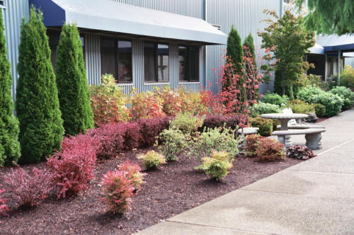 Read more: Landscaping Design & Install